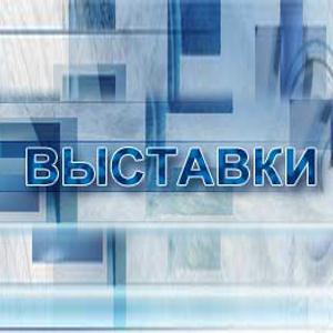 Выставки Новошахтинска